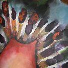 Kiwi 1 by Jacky Burns