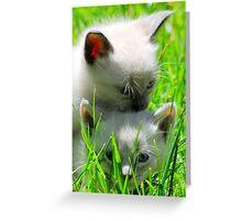 Piggy Back Greeting Card
