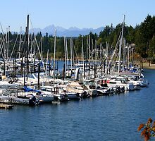 Sailboats in the Harbor near Port Ludlow by Laurel Talabere
