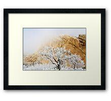 Magic Frost Framed Print