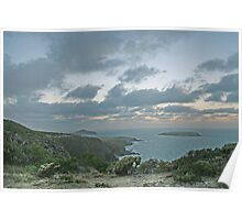 The Bluff and Moon from Newland Head Conservation Park Poster