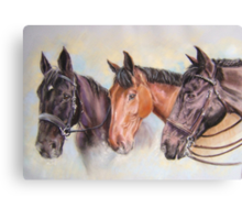 Robinsons' horses Canvas Print