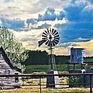 Texas Farm by Pat Moore