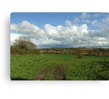 Irish Countryside in Spring Canvas Print
