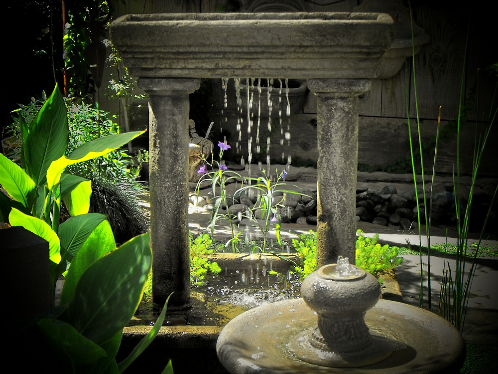 Garden of tranquility by Crystal Fobare