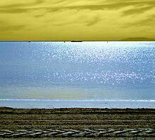 Shades of Long Beach by blackrose25
