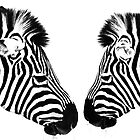 Zebras by Sheila  Smart