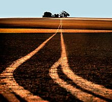 The long road home by Julie Gianotis