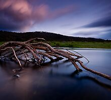 Pine River, Central Highlands, Tasmania by Michael Gay