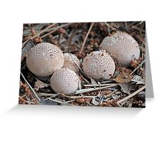 Puff The Daddy Puffball Greeting Card