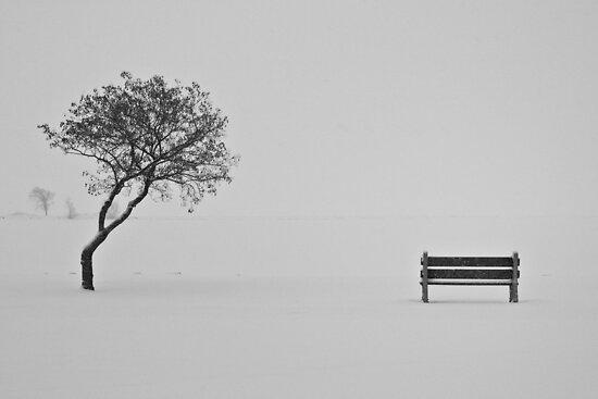 Solitude by Jigsawman