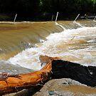 Floodwaters At Cedar Creek, Brisbane Floods 2011, Queensland., Australia. by Ralph de Zilva