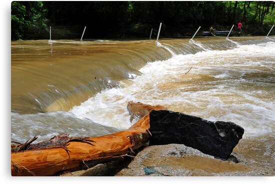 Floodwaters At Cedar Creek, Brisbane Floods 2011, Queensland., Australia. by Ralph de Zilva