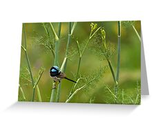 On the fennel Greeting Card