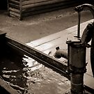 Old fashion water pump by melissagavin