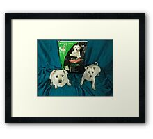 Lite & Mature Framed Print