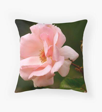 Pink bush Rose Throw Pillow