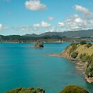 Bay of Islands at Noon by Maksym Hlushko
