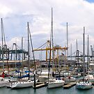 Outer Harbour by Ali Brown