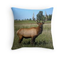Bull Elk ! Throw Pillow