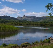 The Langdales by WillBov