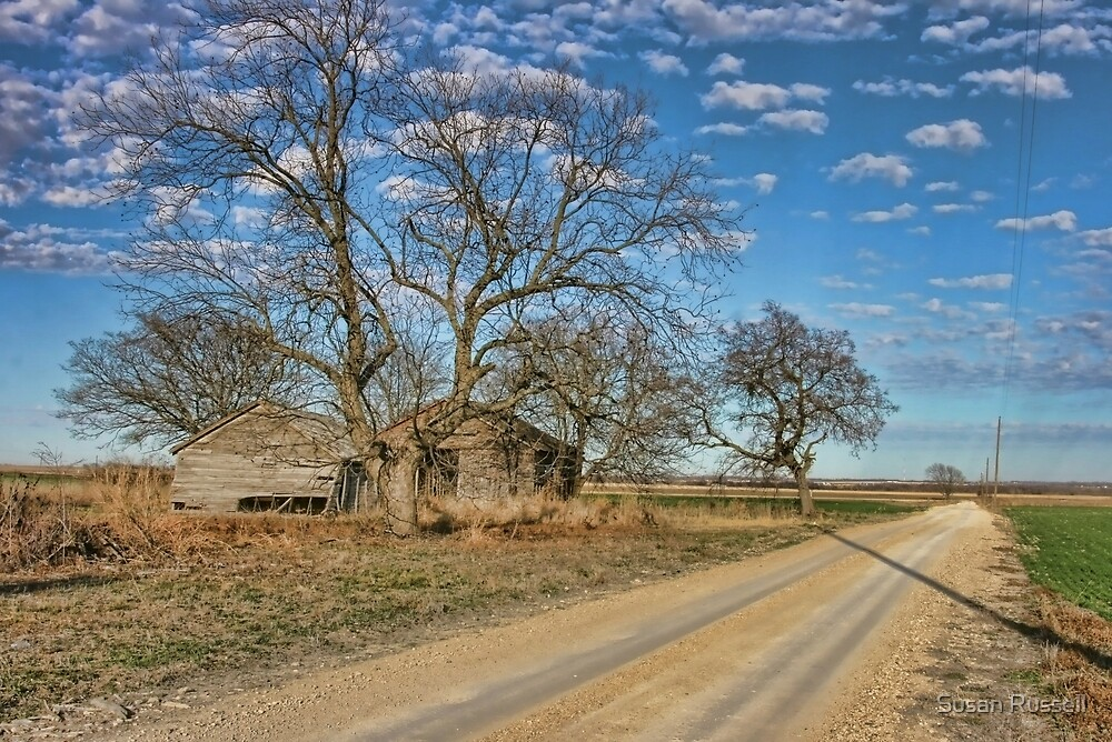 Country Road in Hill County, Texas by Susan Russell