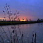 Winter Sunrise by a Frozen Stream by ienemien