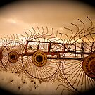 Old Plough by perfectdaypro