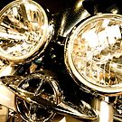 Bike Lights by perfectdaypro
