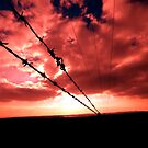 Fire Wire by perfectdaypro