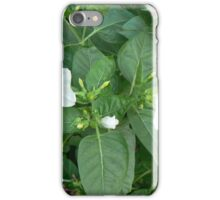 sheer zeer purity iPhone Case/Skin