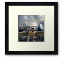 Part of the quest for silence Framed Print