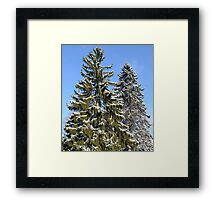 Day after the storm. Framed Print