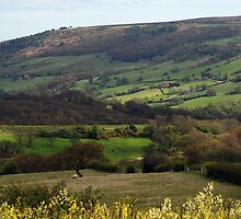 Yorkshire countryside by Sarah Horsman