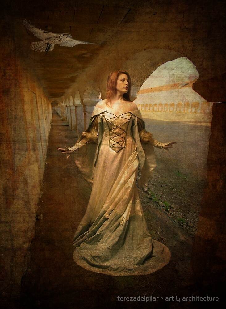 """""""Looking for her Knight"""" by terezadelpilar~ art & architecture"""