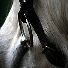 Silver Bit by Fleur Hallam