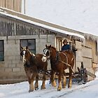 Amish Snow Plow by Michael  Dreese