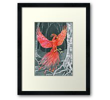 Phoenix Night Framed Print