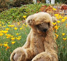 Big Teddy Loves The Outdoors # 2 by Eve Parry