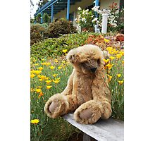 Big Teddy Loves The Outdoors # 2 Photographic Print