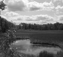 Kidney Pond (Black & White) by Timothy J Badgley