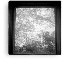 The World Outside Your Window Canvas Print