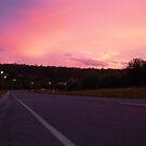 Lilydale Road, Lilydale Road, Tasmania by RainbowWomanTas