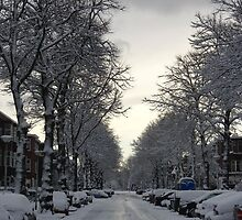 Beautiful snowy day in Voorburg the Netherlands by ladyzaza