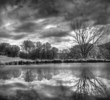 Broken Reflections by Lori Deiter