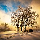 Fire and Ice - Winter Sunset Landscape by Dave Allen