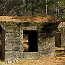Pennsylvania Mine Remnants by Patty (Boyte) Van Hoff