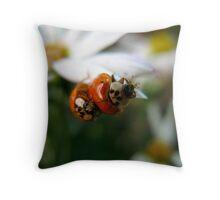 Ladybug Shuffle Throw Pillow