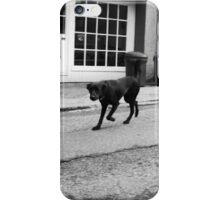 Mr Friendly iPhone Case/Skin