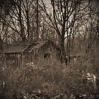 Old Shack by ericseyes